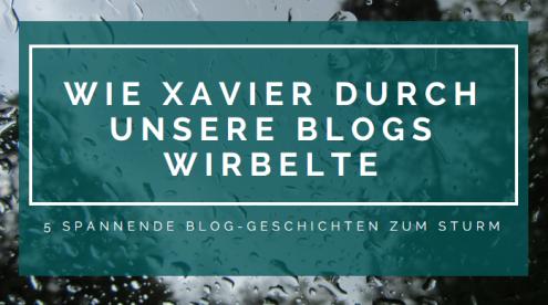 Wie Xavier durch unsere Blogs wirbelte - 5 spannende Blog-Geschichten zum Blog